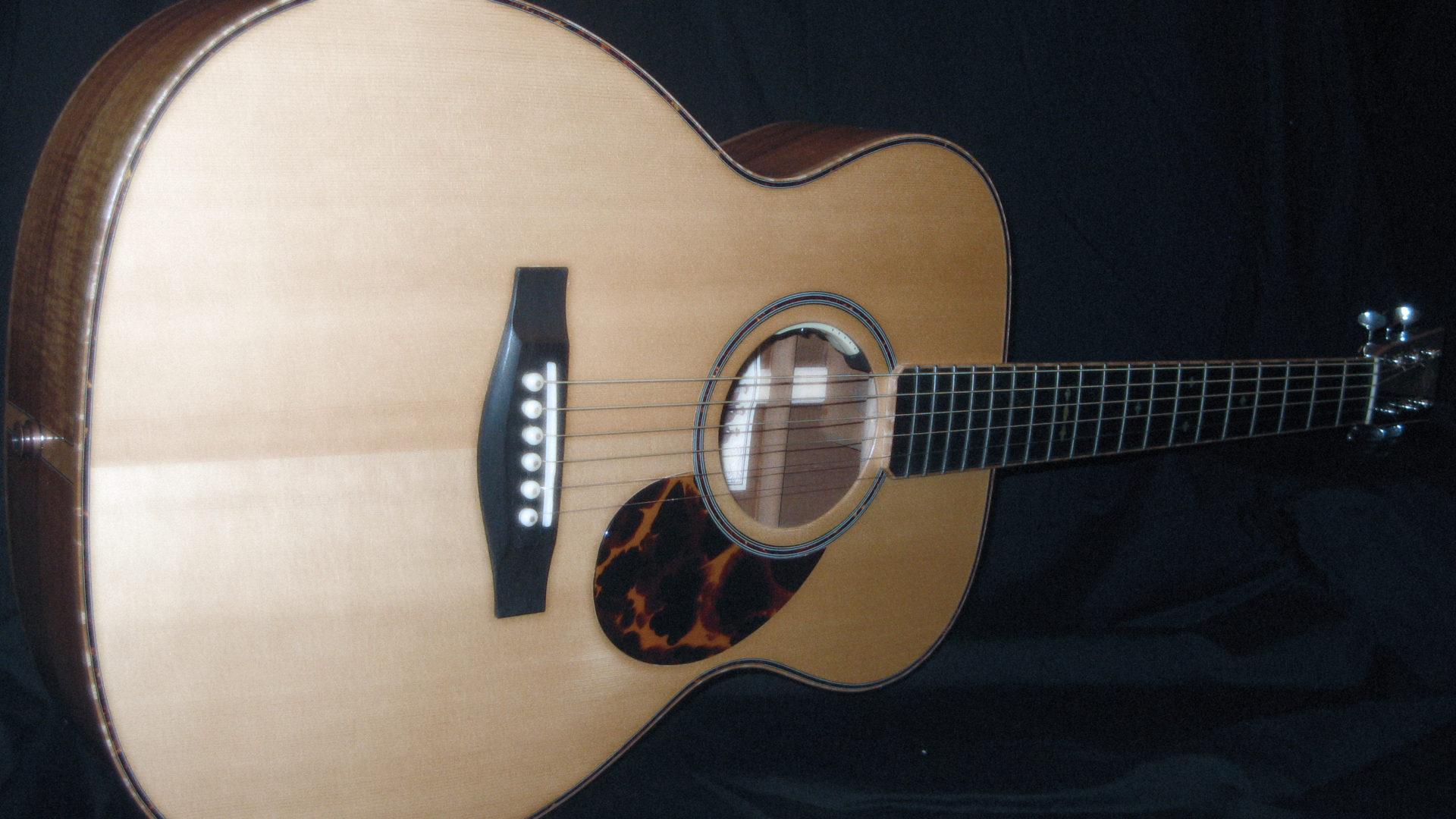 The Guitar Accompanist